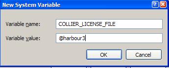 Setting up a Server FlexNet License